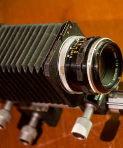 Canon FL bellows with FL 50mm F1.8